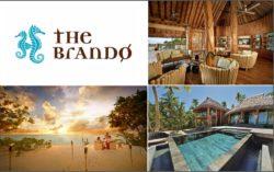 the-brando