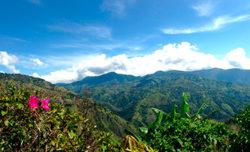 Wikinger-Gruppen erobern auf Dschungelpfaden das jamaikanische Inland.