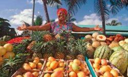 Marktfrau mit bunten Früchten
