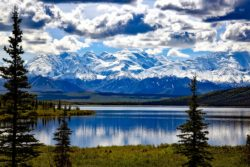 denali-national-park-1733313_1280