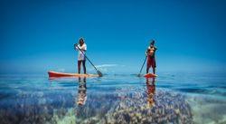 Paddleboarding über klarem Wasser und Korallen